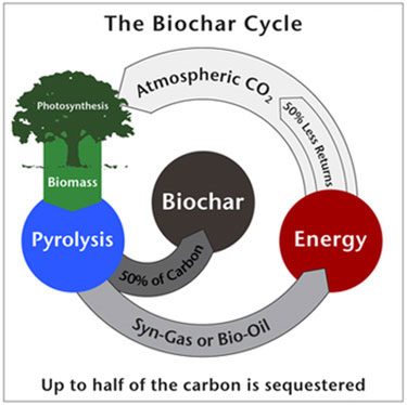 BiocharCycle_374